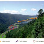 Animation et intégration de la TVB dans le SCoT du Massif des Vosges