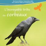 Des expositions itinérantes disponibles à la location pour découvrir la faune et la flore du territoire !