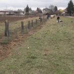 Création d'un parc périurbain et de corridors écologiques dans l'agglomération trinationale de Bâle