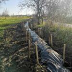 Actions concrètes pour la restauration de la TVB ardennaise en zone agricole